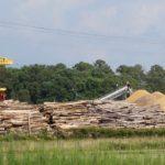 Biomasse: EU fragt, denkhausbremen antwortet
