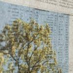 degrowth: eine Fotoserie von Eva-Maria Lopez