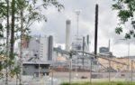 Bioökonomie in Finnland: Nachhaltig oder fragwürdig?