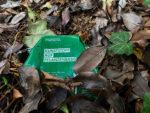 Bioplastik - Nachhaltige Alternative oder nur eine weitere Bio-Lüge?